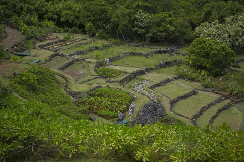Kauai - Limahuli Garden & Preserve
